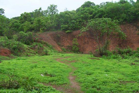 Approved Plot for Sale in Goa